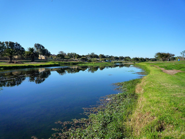 Views along the Liesbeek River
